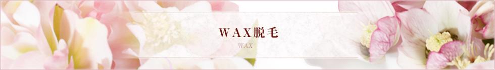 WAX脱毛